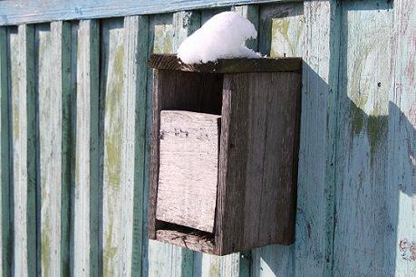 бесплатный почтовый ящик