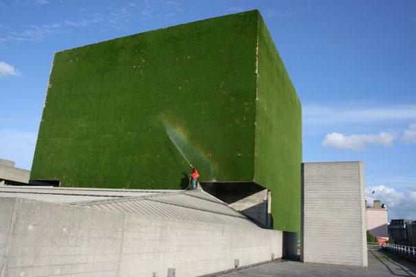 26 дизайнерских творений из зеленых растений (часть 2)
