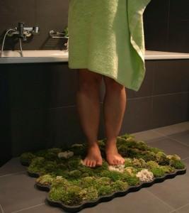 Живой коврик из мха для ванной комнаты