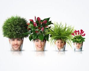 цветочные горшки с фотками