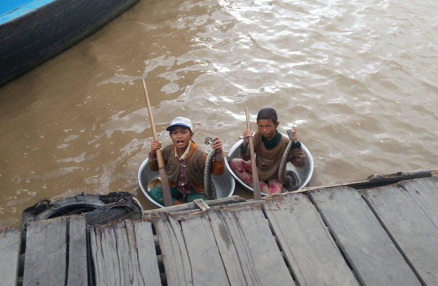 дети в тазиках со змеями