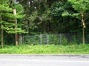 забор вокруг усадьбы Рокфелера